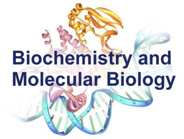 Molecular Biology what are the best majors
